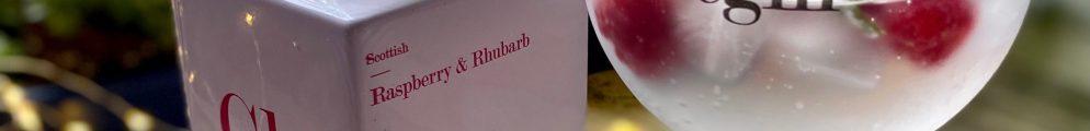 glaswegin raspberry and rhubarb gin perfect serve