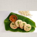 Oats vegetable idli