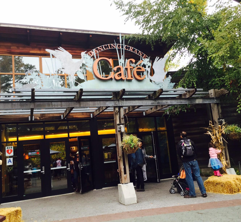 Dancing Crane Cafe Bronx Zoo Food Lover Girl