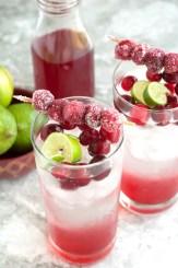 Sparkling Cranberry Lime Mocktail