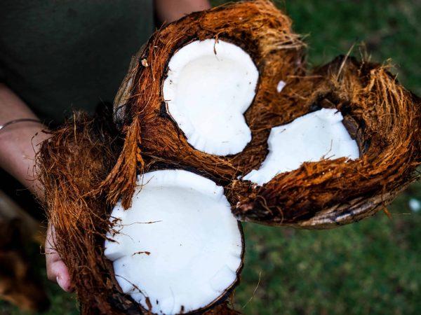 Kokosöl kann beim Abnehmen unterstützend wirken.