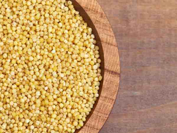 Closup of proso millet on wooden background. Top view with copy space