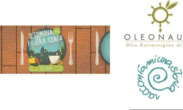 Raccontami dell'olivo e dell'olio