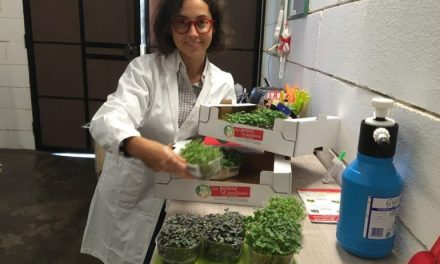Mi Green Food porta i micrortaggi in Italia