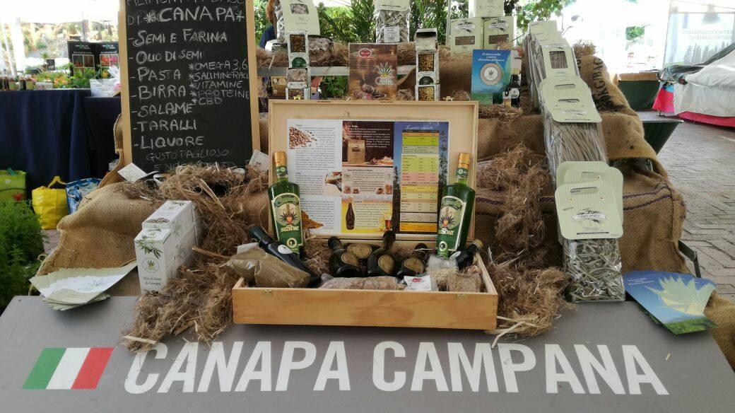 Il Secondo Canapa Day a Caivano; confronto tra agronomi e accademici, degustazioni e visita nei campi.