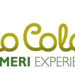 Olio Colato, Flumeri (Avellino) capitale della cultura dell'olio d'oliva del Sud Italia