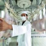 la carne costa poco: l'allarme di Slow Food