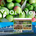 OlivYou – E-commerce dell'olio