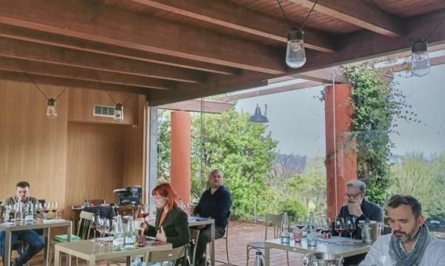 Sud Top Wine, via alle selezioni dei migliori vini del Sud Italia