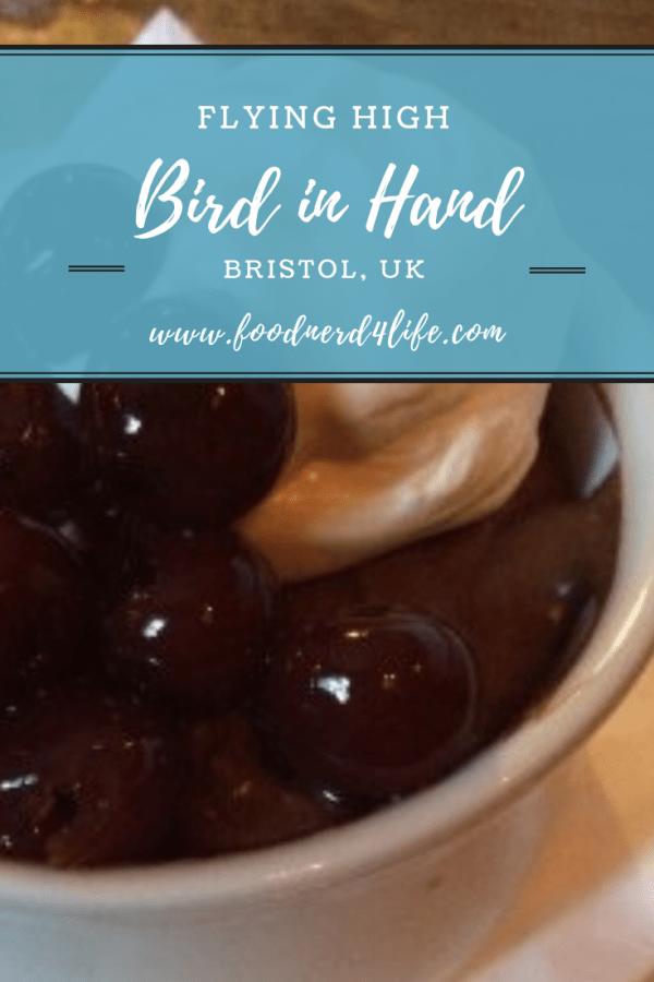 Bird in Hand Pin