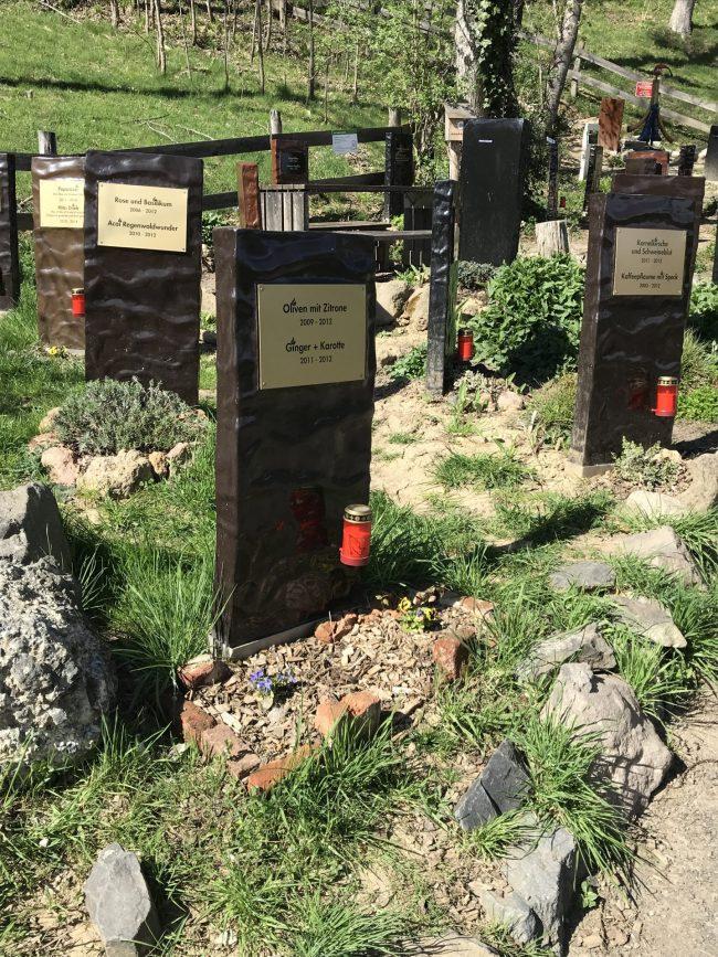 Zotter Flavour Graveyard