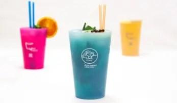 PCUP bicchiere ecologico plastica