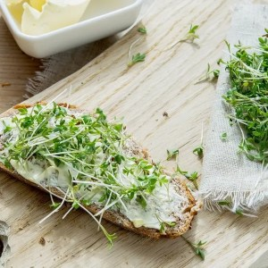 Cress, a rich source of Vitamin B6