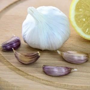 Garlic, a rich source of Vitamin B6