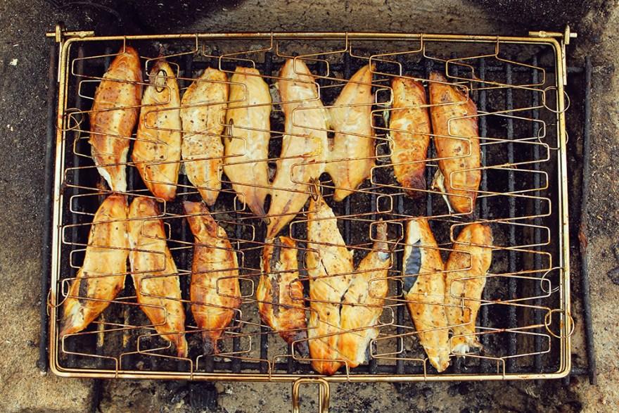 fresh grilled mackerel in Scotland