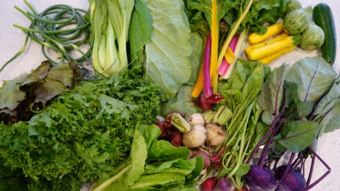 This is one week's worth of a CSA share. Got salad dressing? (Photos: Paul Harrison.)