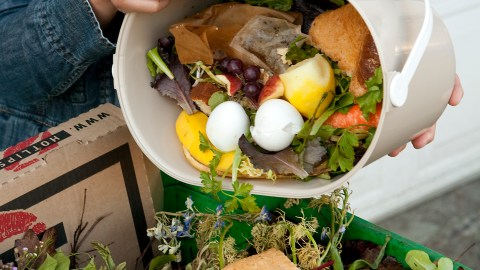 Food_Scraps_and_Yard_Debris_Collection_in_Portland_2010_by_Tim_Jewett