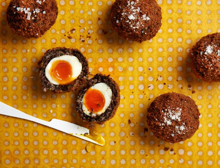 black pudding scotch eggs recipe