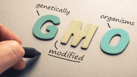 GMO_1000x565