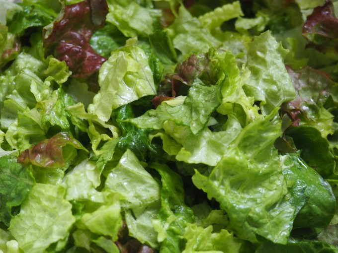 red and romaine lettuce