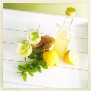 Ingwer, Zitronen, Likör, foodwerk.ch