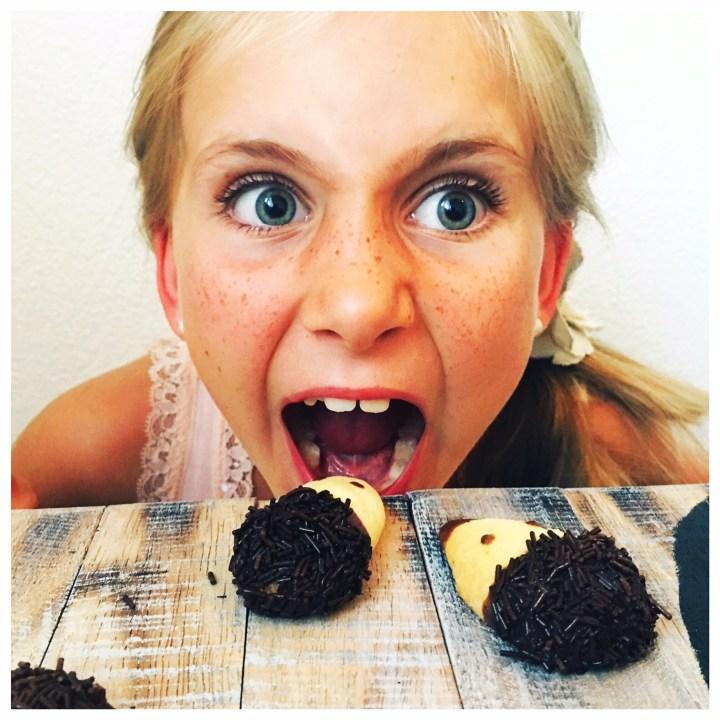 Igel, Keks, Igel Kekse, einfach Liv, mit Marsa, foodwerk.ch
