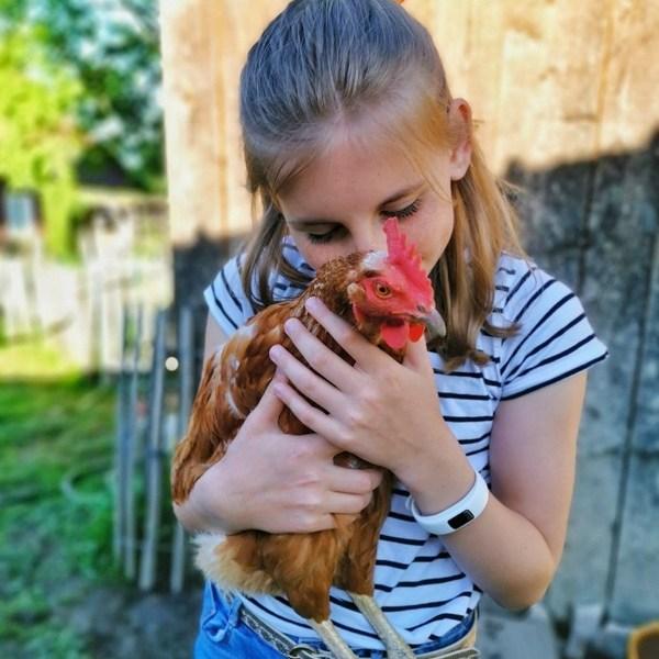 Liv mit Huhn