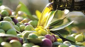 olio oliva 1
