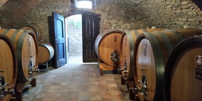 WINE/ LA COLLINA DEI CILIEGI DI MASSIMO GIANOLLI LA BEST PRATICES PER VALORIZZAZIONE DEL TERRITORIO