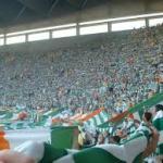 celtic fan glasgow