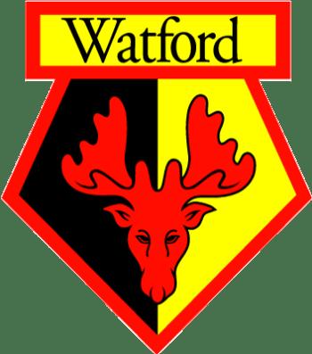 Club Crest - Watford 2016-17