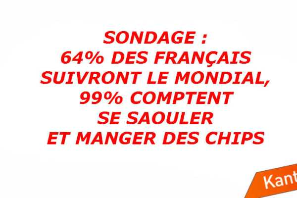 sondage-kantarsport-64-100-suivi-mondial-2014-illustration