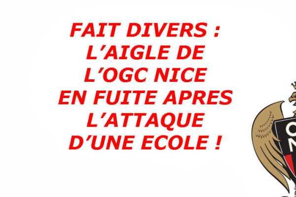 aigle-de-l-ogc-nice-attaque-ecole-fuite-illustration