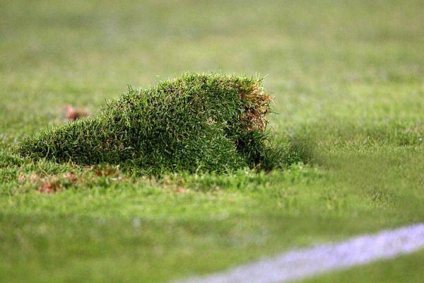 footballfrance-sc-bastia-pelouse-furiani-malade-sida-illustration