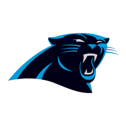 FOOTBALL IN HIGH HEELS:  CAROLINA PANTHERS