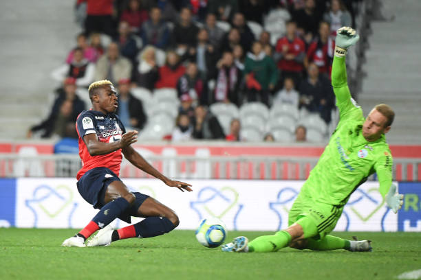 Ligue 1: Osimhen On Target Again As Lille Beat Strasbourg