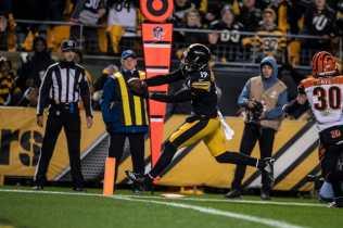Land Clark (Pittsburgh Steelers)