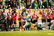 Dale Shaw (Green Bay Packers)