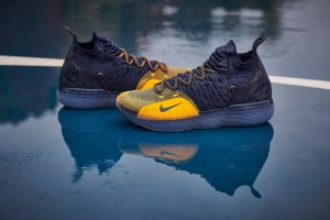 Nike KD 11 Michigan