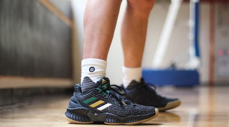 Adidas Pro Bounce Low Jaylen Brown PE