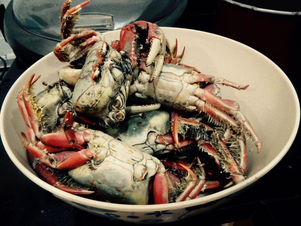 R.I.P Crabs