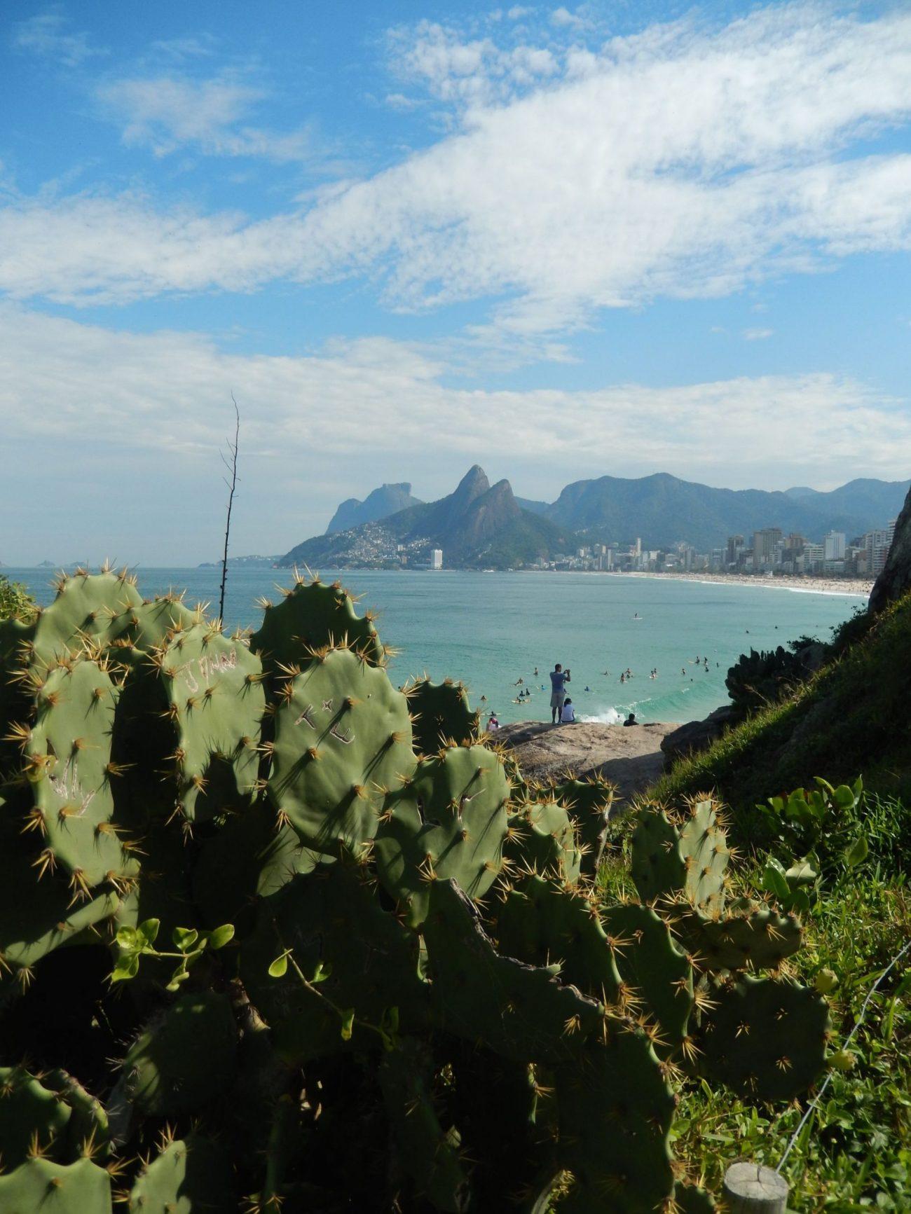 Ipanema view and cactus