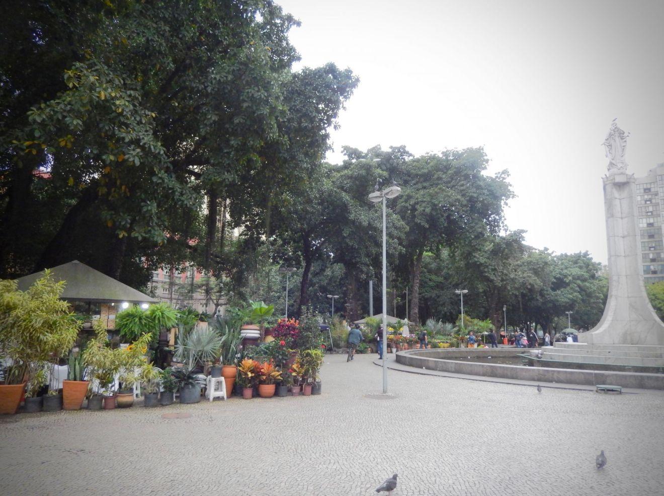 Largo do Machado Square trees Knockout Neighborhood Guides Rio de Janeiro
