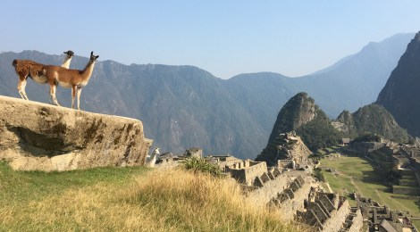 Five highlights of Peru: Trekking the Inca Trail and more
