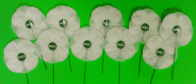 poppies-for-min