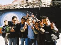 IPF Palestine project