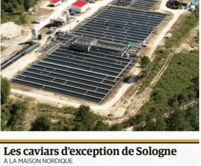 capture decran 2020 12 31 a 101516 338x280 Le caviar français s'invite à la table des grands