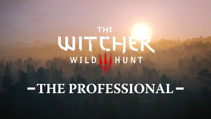 The Witcher Wild Hunt