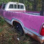 Pink Panther Dodge Truck For C Bodies Only Classic Mopar Forum
