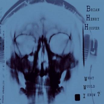 Resultado de imagen de Brian Henry Hooper - What Would I Know?